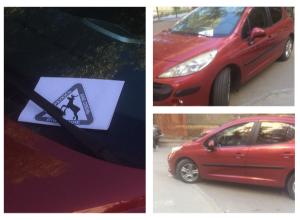 Волгоградцы пометили выдающегося «оленя» на красном автомобиле