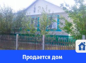 Продается большой дом с верандой и фруктовым садом