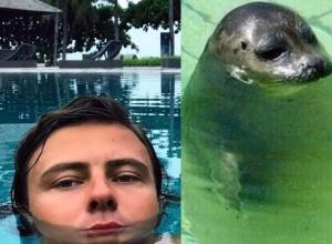 Поклонники сравнили Прохора Шаляпина с тюленем