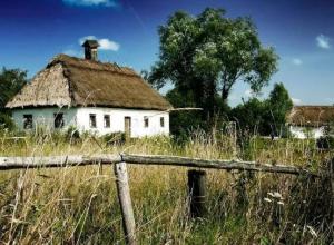 В Волгоградской области активнее всего голосуют селяне