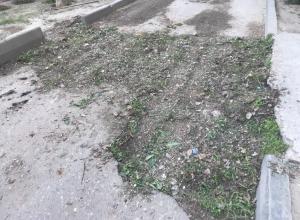 Сорняками и скошенной травой залатали дорогу на севере Волгограда