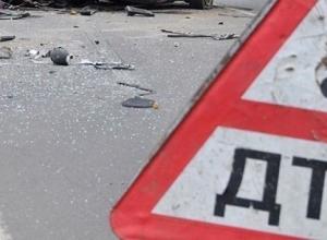 ВАЗ-21104 влетел в лошадь под Волгоградом: погиб пассажир