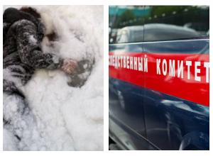 Рецидивистку обнаружили вмерзшей в лед на юге Волгограда