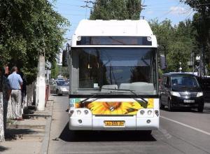 В Волгограде студентов будут возить на пары спецавтобусами