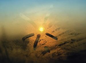 Волгоградская область начинает рабочую неделю дождями и туманами