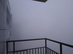 Волгоградцы с утра не увидели ничего из-за ужасного тумана