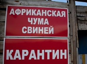 В Волгоградской области под карантин взяли целый хутор