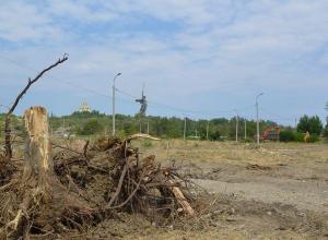 Жители Волгограда назвали варварством вырубку парка сталинградских вдов