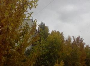 Дождем и похолоданием встретило волгоградцев воскресенье