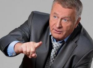 К нам едет Жириновский: Волгоград замер в ожидании