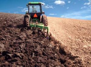 В Волгоградской области сокращаются сельскохозяйственные земли