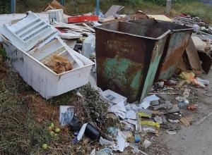 Жители «Новостройки»  тонут в горе мусора на севере Волгограда