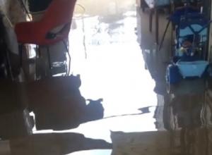«Блокнот Волгограда» публикует видео потопа в поселке Городище