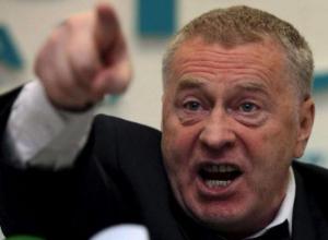 Владимир Жириновский хочет стать депутатом Волгограда