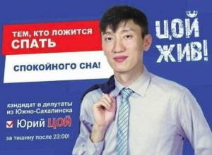 Политолог из Волгограда собрал самые нелепые предвыборные плакаты