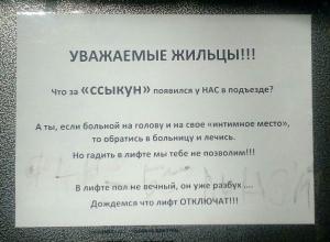«Ссыкун» атаковал многоэтажку на западе Волгограда