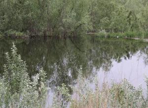 В Волго-Ахтубинской пойме пытаются удержать сброшенную воду
