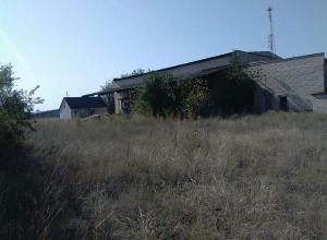 Казаки зачищают детские лагеря в поисках пропавшей девочки Сони из Калача