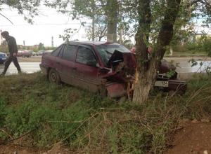 Автоледи на Daewoo протаранила дерево на юге Волгограда