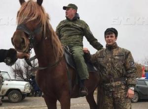 Депутат Осипов нашел себе какую-то кобылу