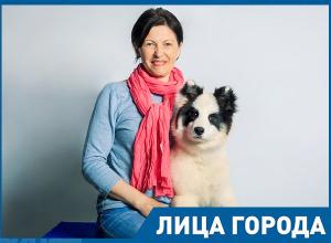 Из-за волгоградской жары ездовая собака может погибнуть, – Лариса Лычева