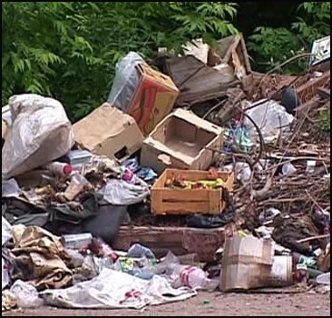 Область завалена мусором