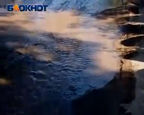 Жителей юга Волгограда по утрам будит шелест зловонной реки