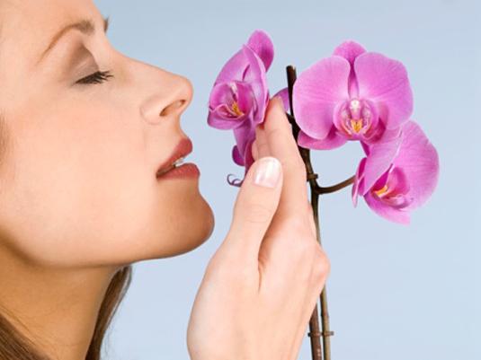 Волгоградские женщины выбирают партнера по запаху