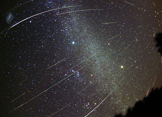 Что подарит метеорный поток Леониды волгоградцам, рассказала астролог