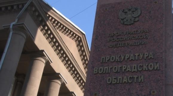 Вцентре Волгограда на обвинителя напала стая бездомных собак