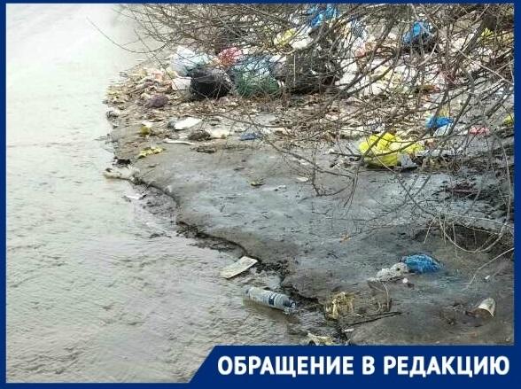 Из-за скопления мусора на путях в Волгограде было остановлено движение трамваев