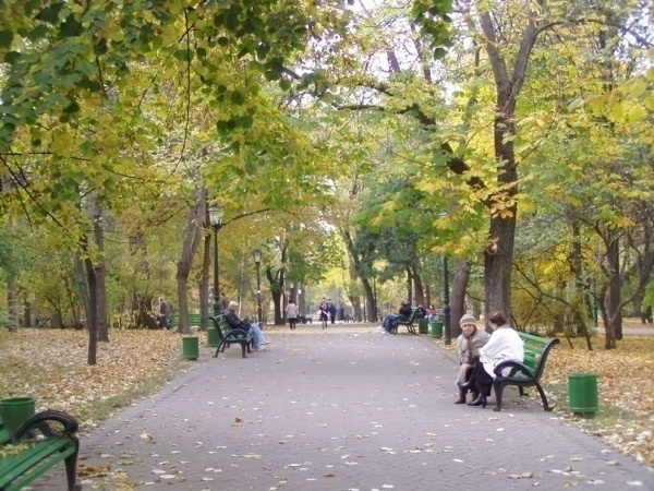 Волгоградские парки сделают уникальными