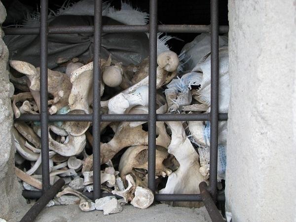 Под Волгоградом в административном здании найдены 9 мешков с останками солдат