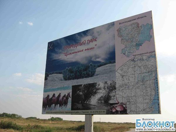 Под Волгоградом администрация продала участок природного парка за 3 тысячи