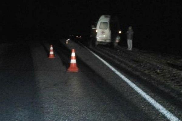 Очевидца ДТП сбили насмерть во время оказания помощи в Михайловском районе