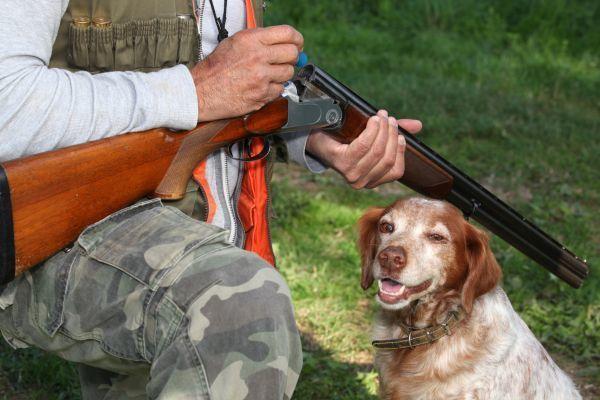 Под Волгоградом охотник вместо косули подстрелил своего друга