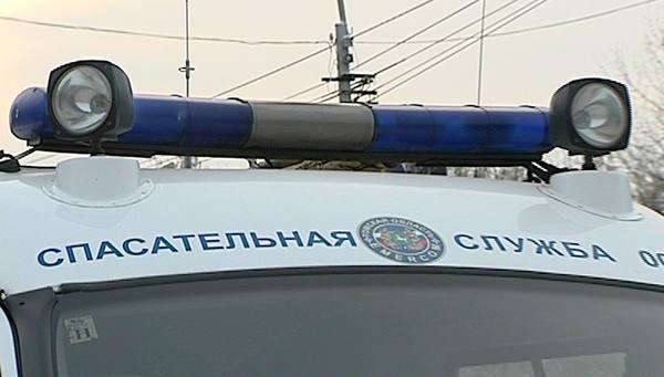 Волгоградские cотрудники экстренных служб сняли человека скрыши иуспокоили кота-дебошира