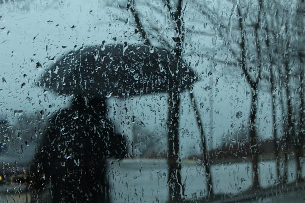 Погода в Волгограде: мокро, ветрено, тоскливо