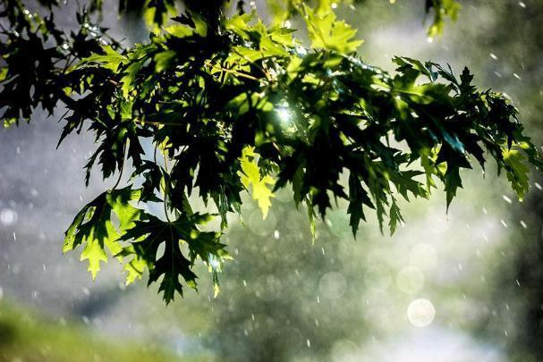 Волгоград утопает в солнечных лучах