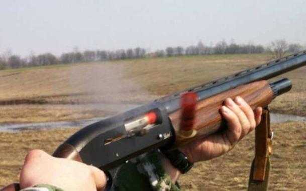 Фермер из ружья расстрелял животных под Волгоградом