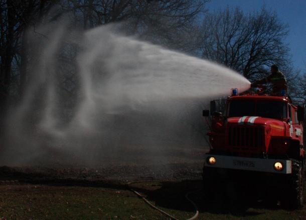 В Волгоградской области за сутки не зарегистрировано новых лесных пожаров