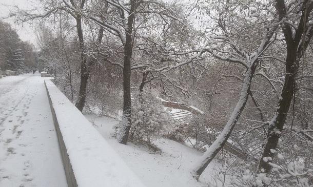 Морозы усилятся до -21ºС в Волгоградской области