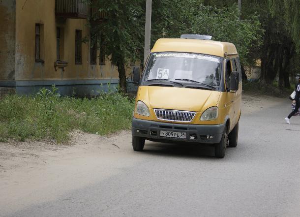 Власти Волгограда устроили голосование между автобусами и маршрутками