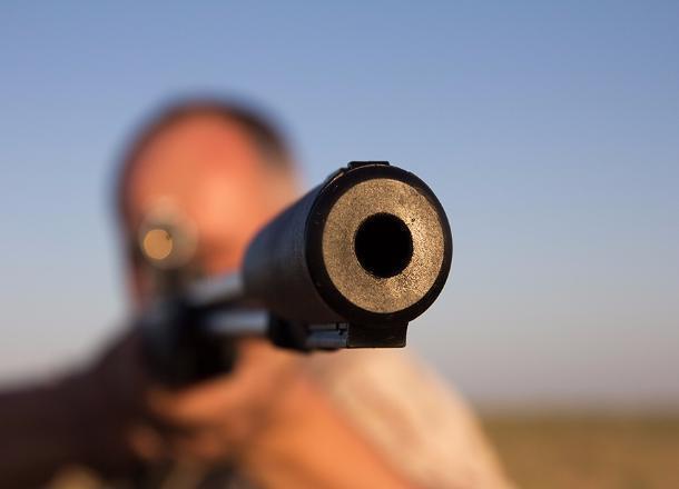 Под Волгоградом браконьеры ответят за убитую косулю