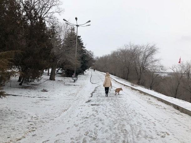 Весна пришла вВолгоградскую область сморозами иметелями
