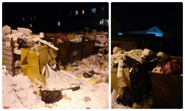 Волгоградцы нашли УК, которая вывозит мусор раз в несколько месяцев