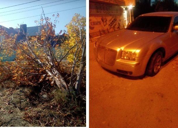 Водитель Chrysler из Армении врезался в каштан, чуть не задавив двух малолетних детей в Волгограде