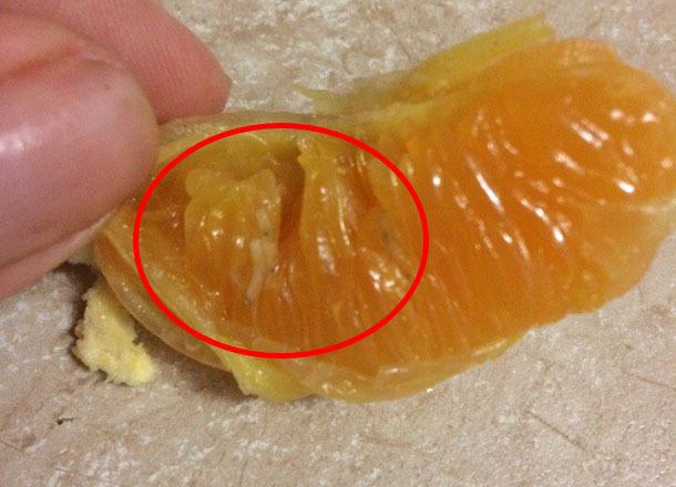 Мандарины с червями нашли на полках волгоградских магазинов