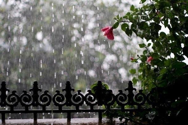 НаВолгоградскую область надвигаются похолодание идожди сгрозами