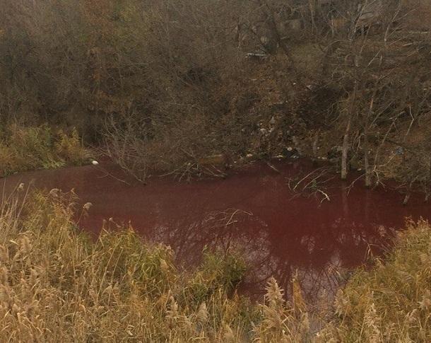 Волгоградцы вспомнили о карах египетских благодаря кровавому озеру на Красном Октябре